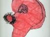Oreille_enfant 6 ans 2