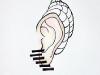 Etude d\'oreille 1